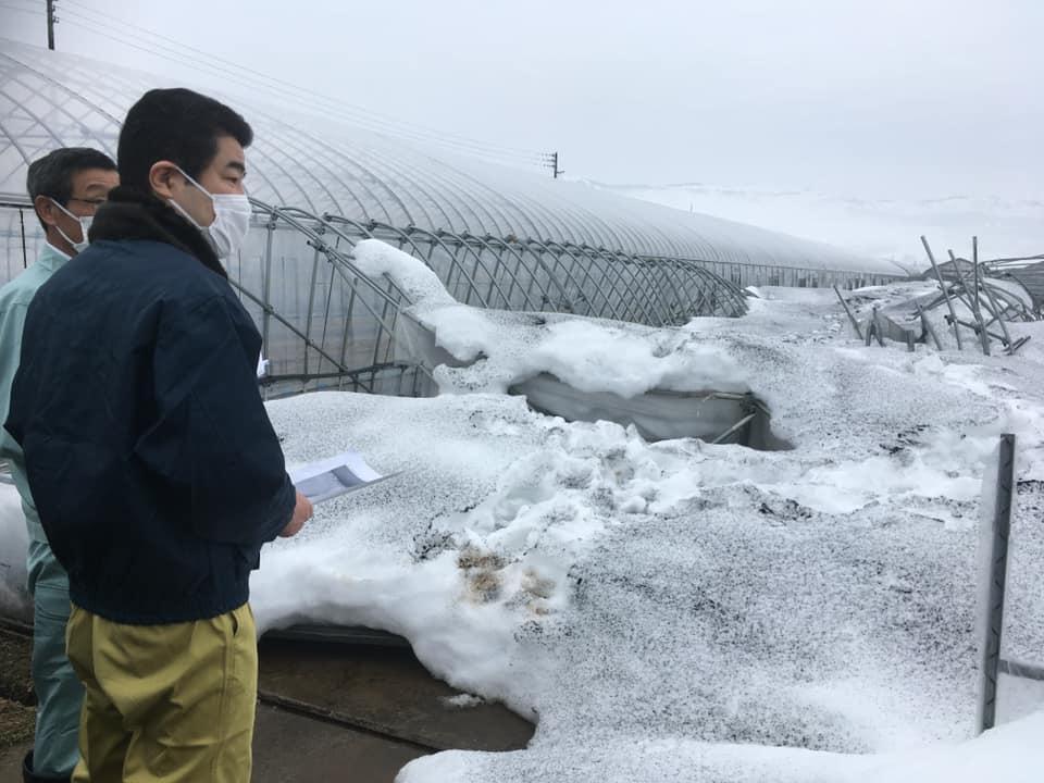 大雪被害視察その1